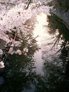 20090410_11