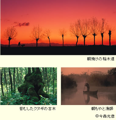 Imamori_380